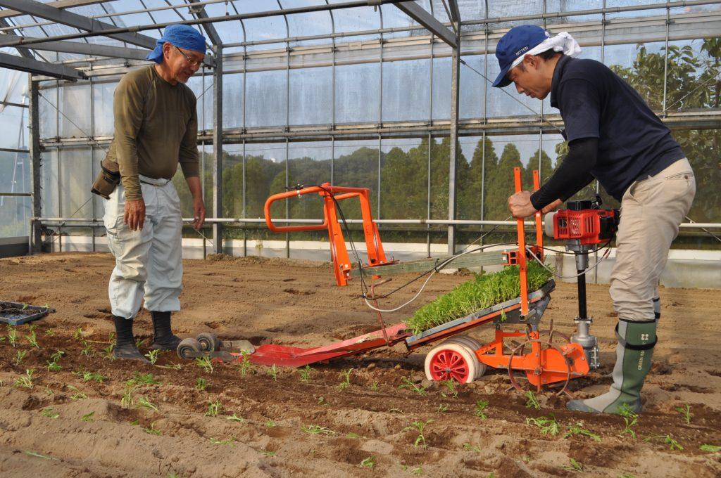 簡易定植機の試験導入(伊敷地区・軟弱野菜での試験導入)